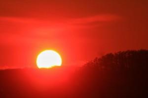 1レッド太陽