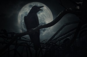 Crow sit on dead tree trunk and croak over fence, old grunge cas